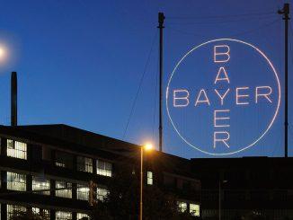 bayer-kreuz-aktie